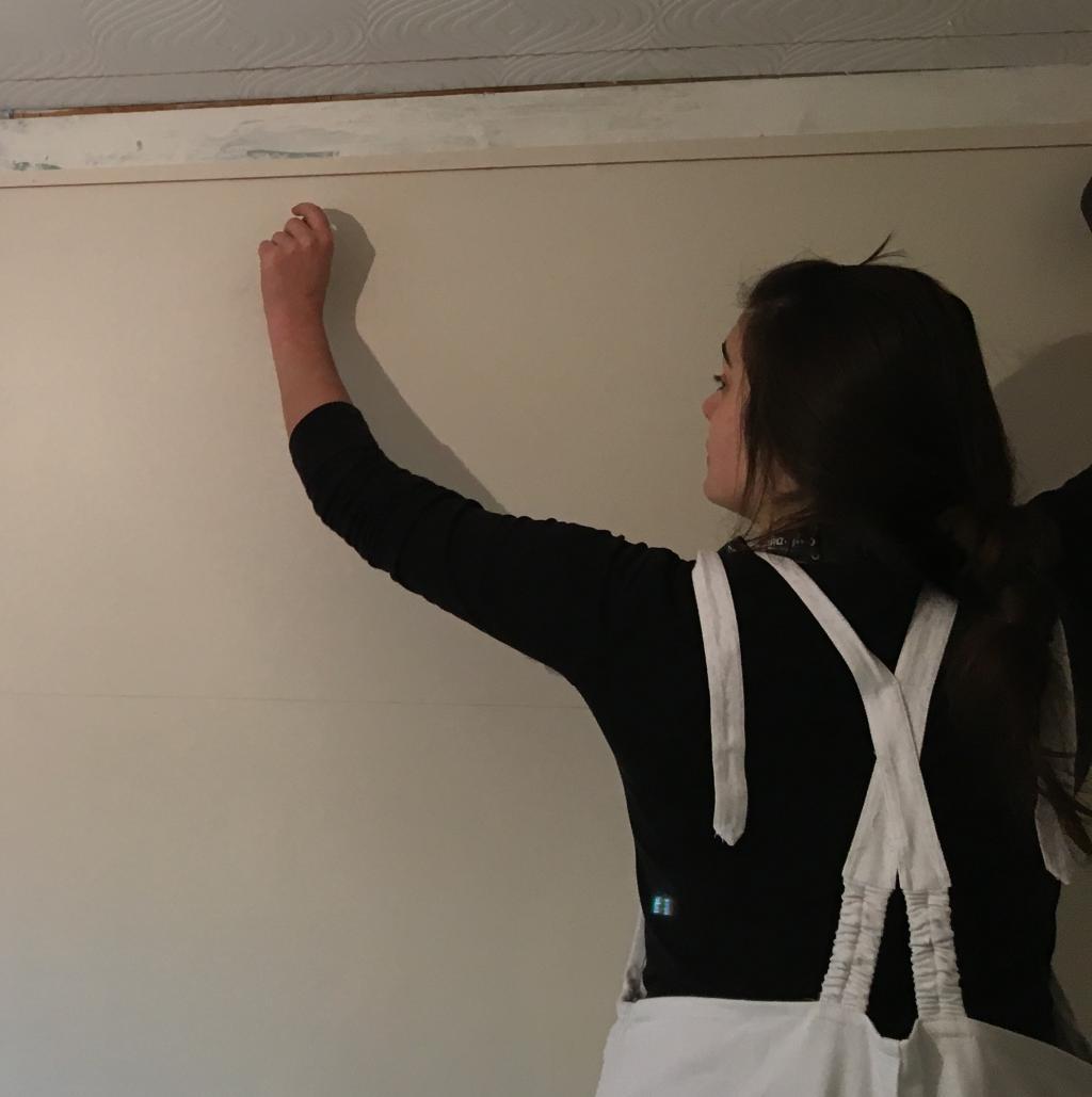 Painting & Decorating Level 3 Apprentice